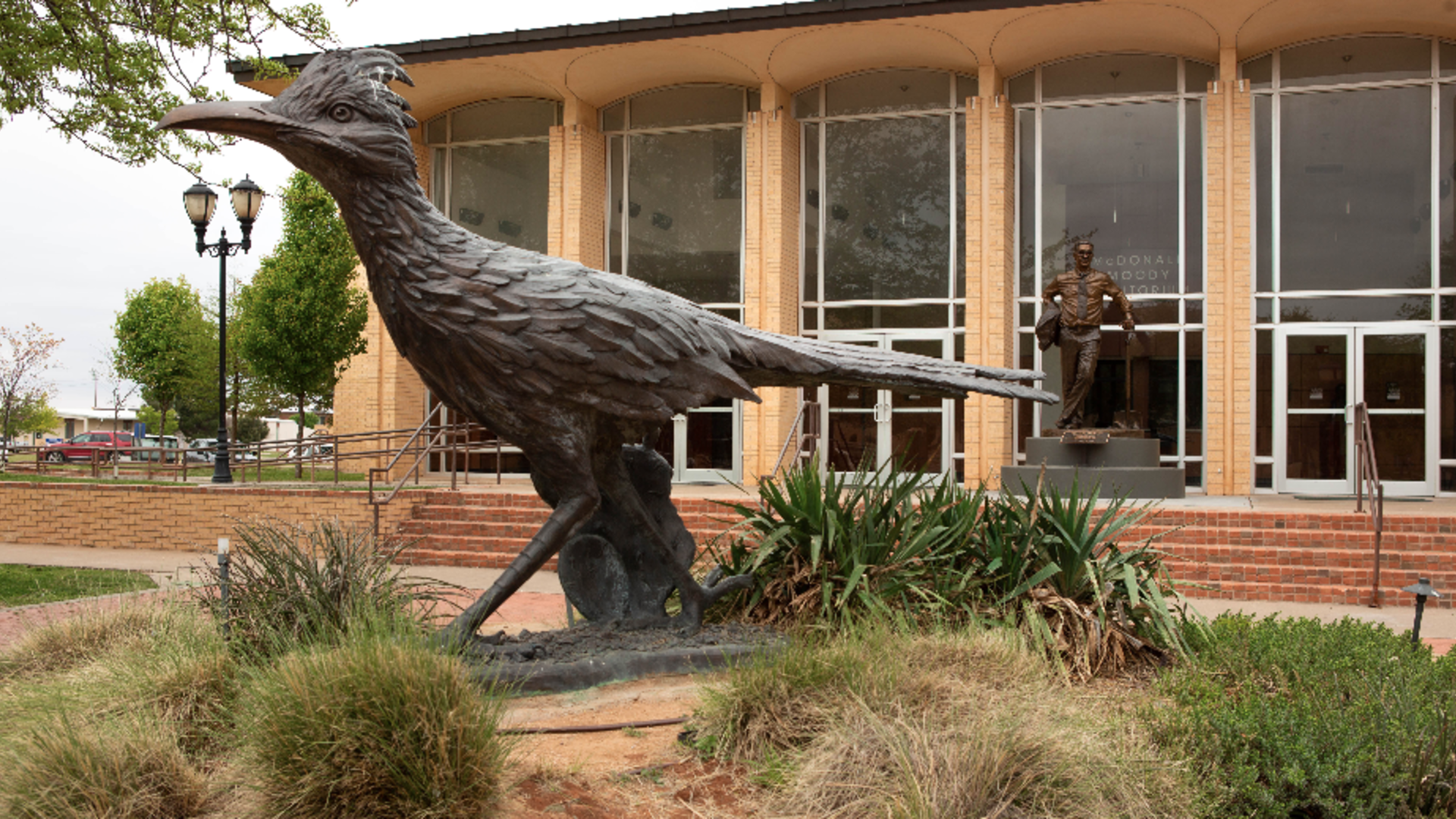 Chaparral statue in front of the McDonald Moody Auditorium
