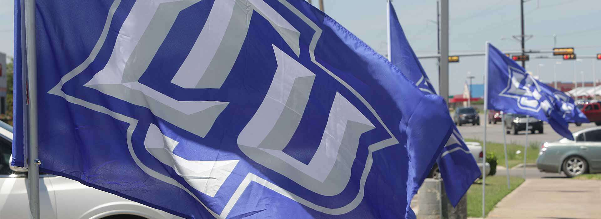 Blue flags with LCU logo in the wind