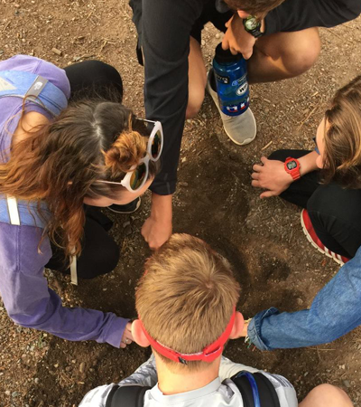 four students digging in the dirt with sticks from up above